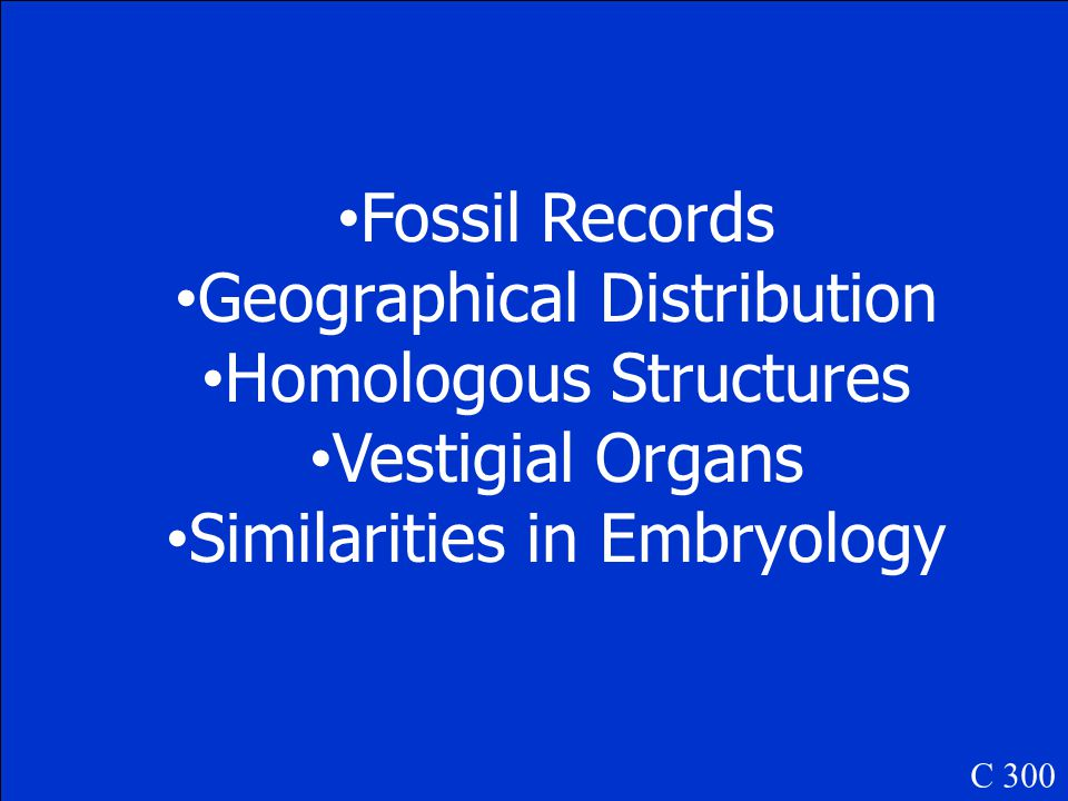 What are Homologous Structures C 200