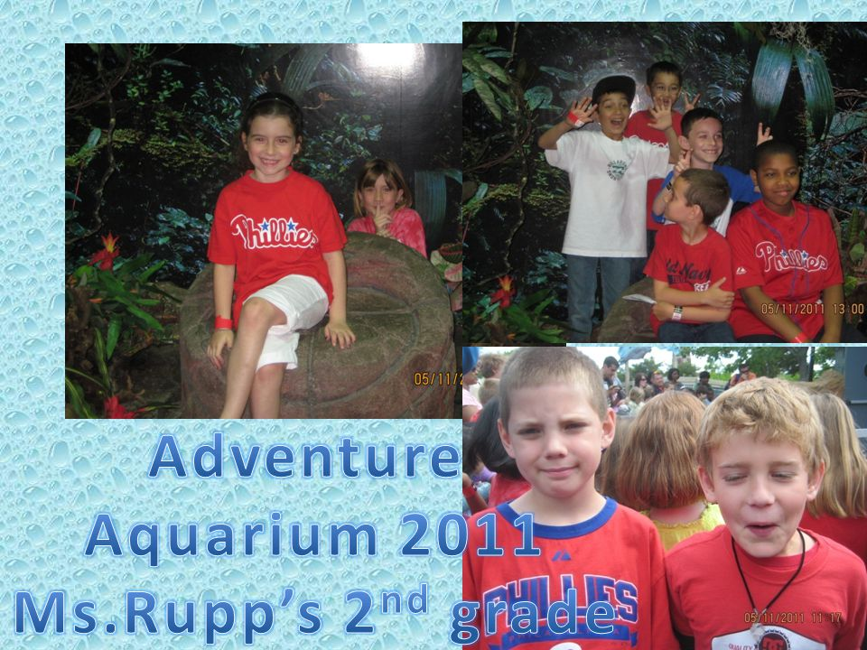 I loved going to the aquarium because it was fun when I saw the hippos and penguins and most of all…….