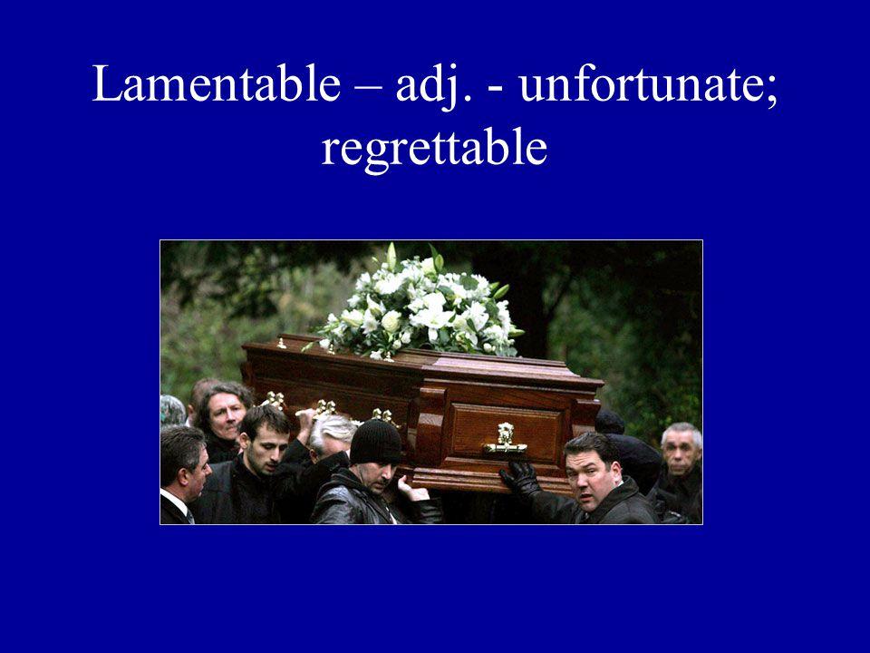 Lamentable – adj. - unfortunate; regrettable