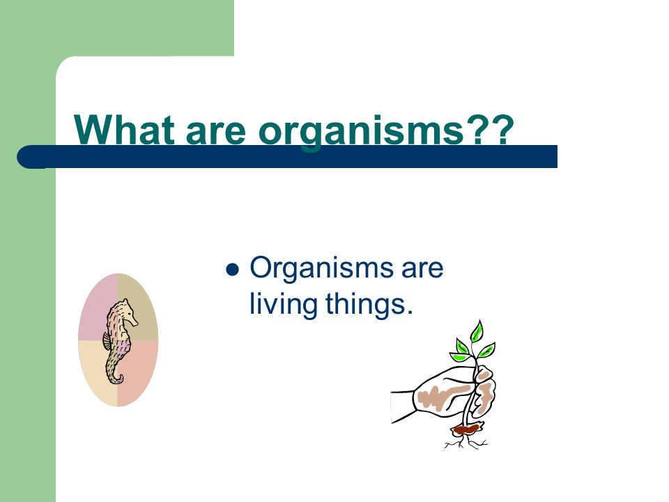 What are organisms?? Organisms are living things.