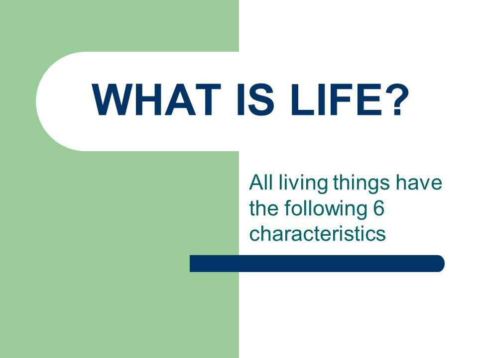 WHAT IS LIFE? All living things have the following 6 characteristics