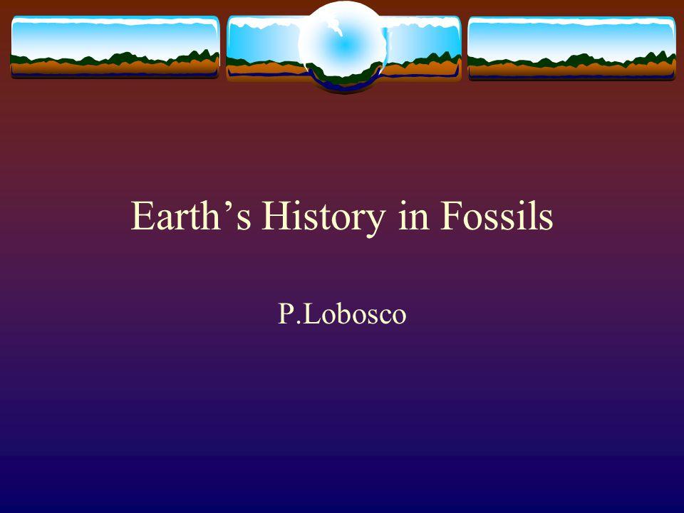 Earth's History in Fossils P.Lobosco