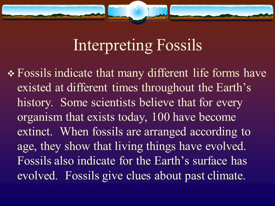 Interpreting Fossils  Fossils indicate that many different life forms have existed at different times throughout the Earth's history. Some scientists