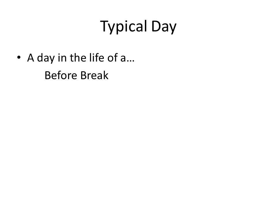 Typical Day A day in the life of a… Before Break