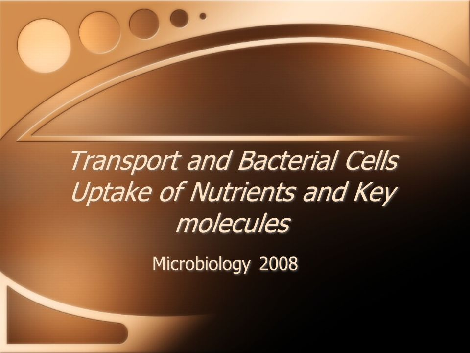 Transport and Bacterial Cells Uptake of Nutrients and Key molecules Microbiology 2008