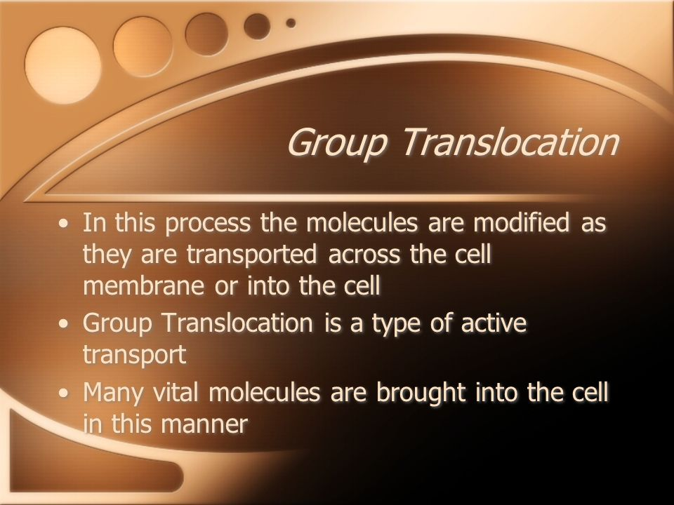 Group Translocation In this process the molecules are modified as they are transported across the cell membrane or into the cell Group Translocation is a type of active transport Many vital molecules are brought into the cell in this manner In this process the molecules are modified as they are transported across the cell membrane or into the cell Group Translocation is a type of active transport Many vital molecules are brought into the cell in this manner