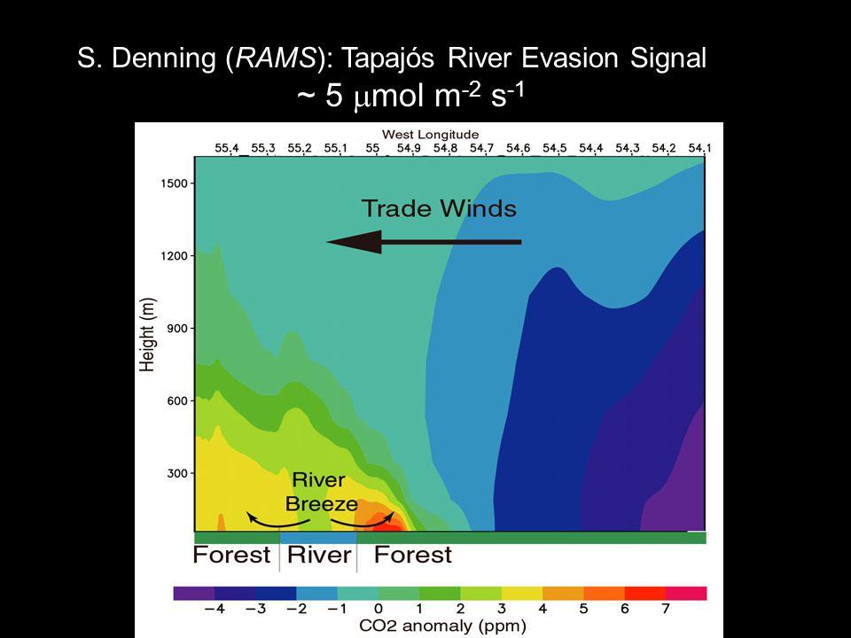 S. Denning (RAMS): Tapajós River Evasion Signal ~ 5  mol m -2 s -1