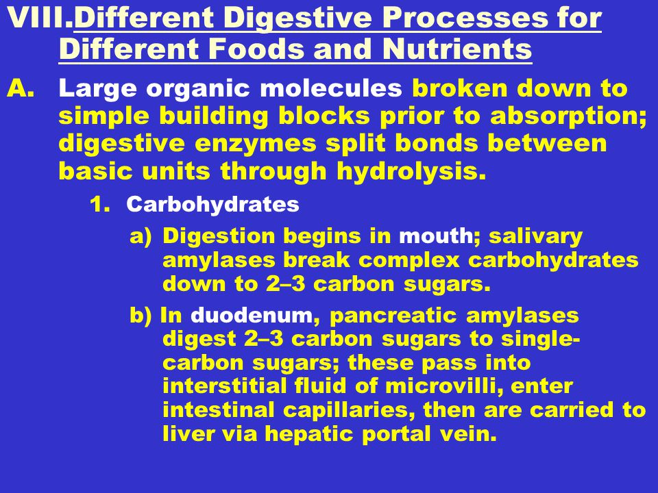 VIII.Different Digestive Processes for Different Foods and Nutrients A.Large organic molecules broken down to simple building blocks prior to absorption; digestive enzymes split bonds between basic units through hydrolysis.