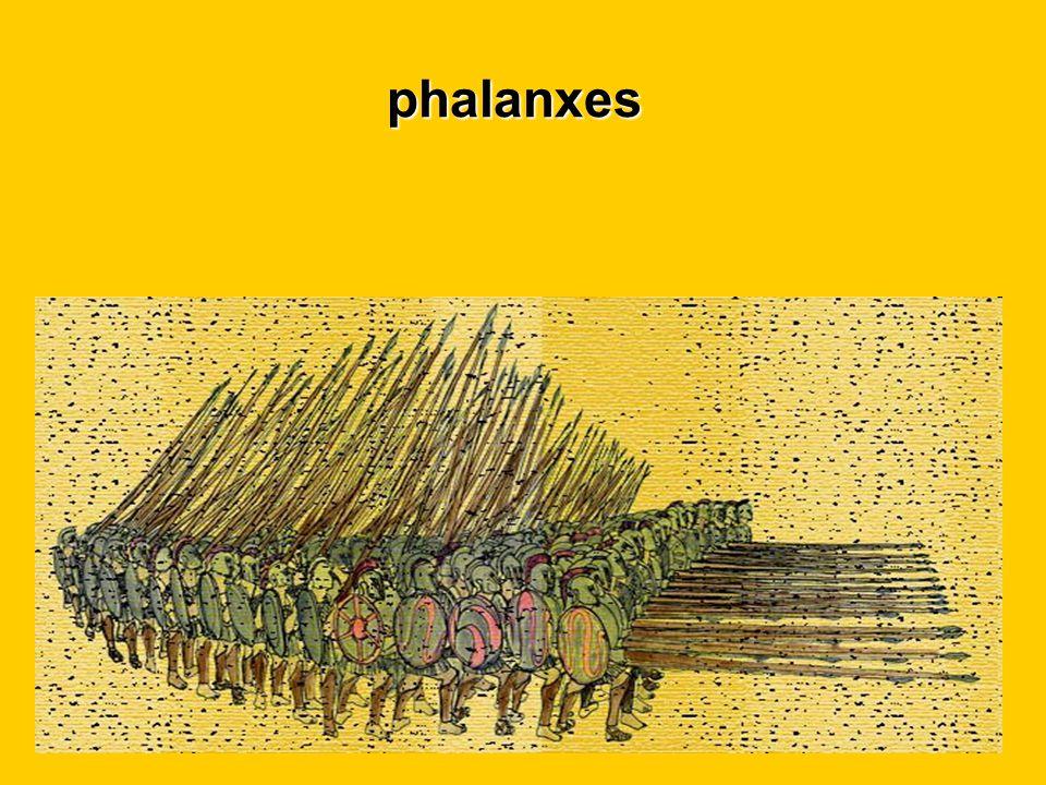 phalanxes