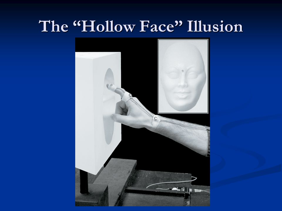 "The ""Hollow Face"" Illusion"