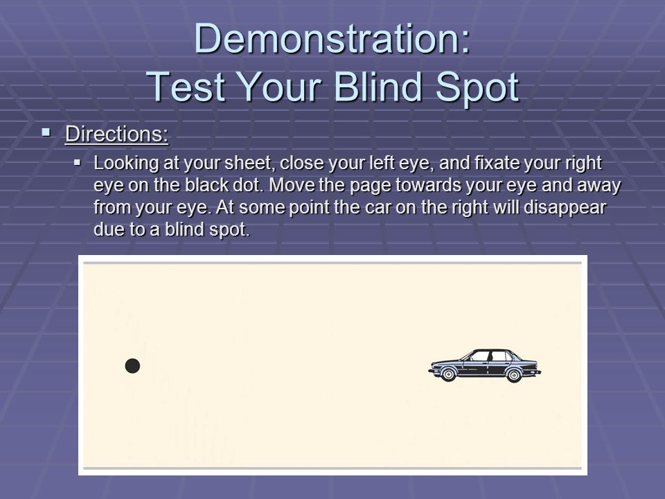 Demonstration: Test Your Blind Spot  Directions:  Looking at your sheet, close your left eye, and fixate your right eye on the black dot.