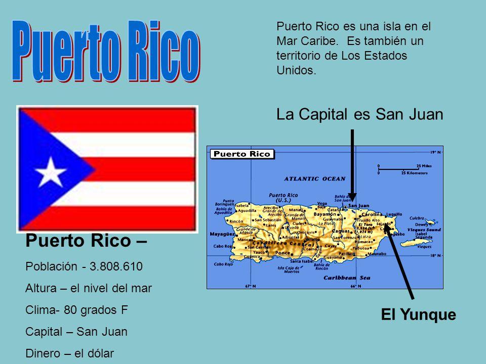 La Capital es San Juan El Yunque Puerto Rico – Población - 3.808.610 Altura – el nivel del mar Clima- 80 grados F Capital – San Juan Dinero – el dólar Puerto Rico es una isla en el Mar Caribe.