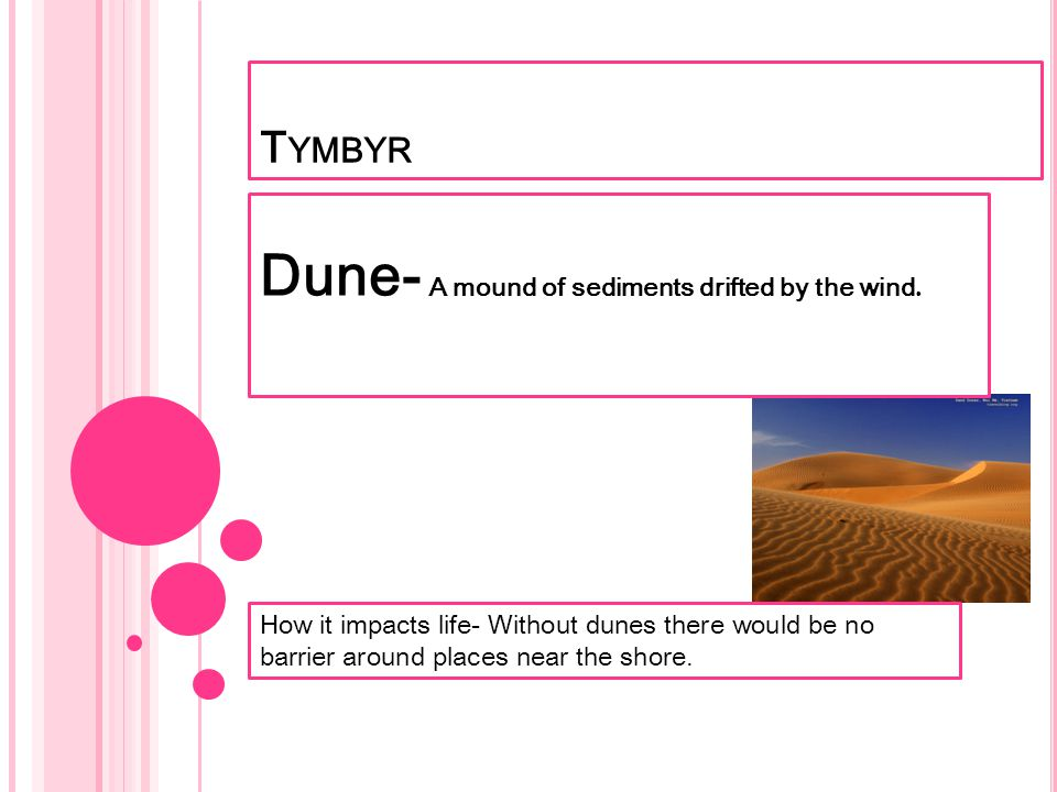 T YMBYR Dune- A mound of sediments drifted by the wind. How it impacts life- Without dunes there would be no barrier around places near the shore.