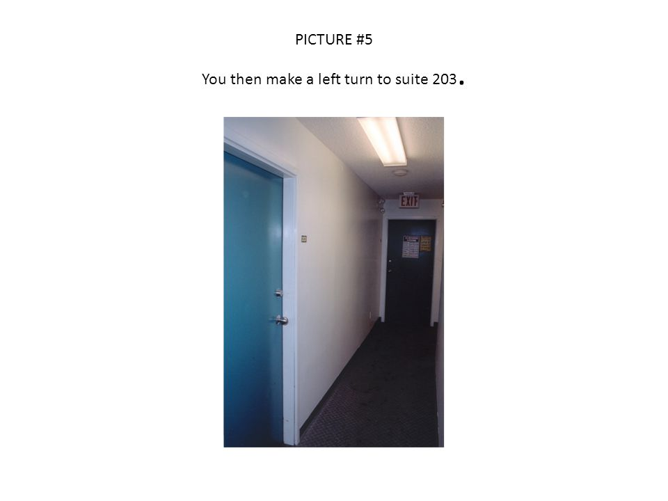 PICTURE #6 There are bloodstains on the wall across from the entrance door to suite 203.