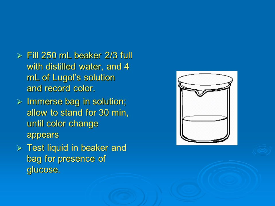  Fill 250 mL beaker 2/3 full with distilled water, and 4 mL of Lugol's solution and record color.