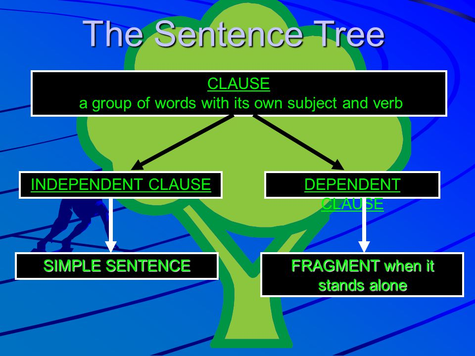 The Sentence Tree CLAUSE a group of words with its own subject and verb INDEPENDENT CLAUSEDEPENDENT CLAUSE SIMPLE SENTENCE FRAGMENT when it stands alo