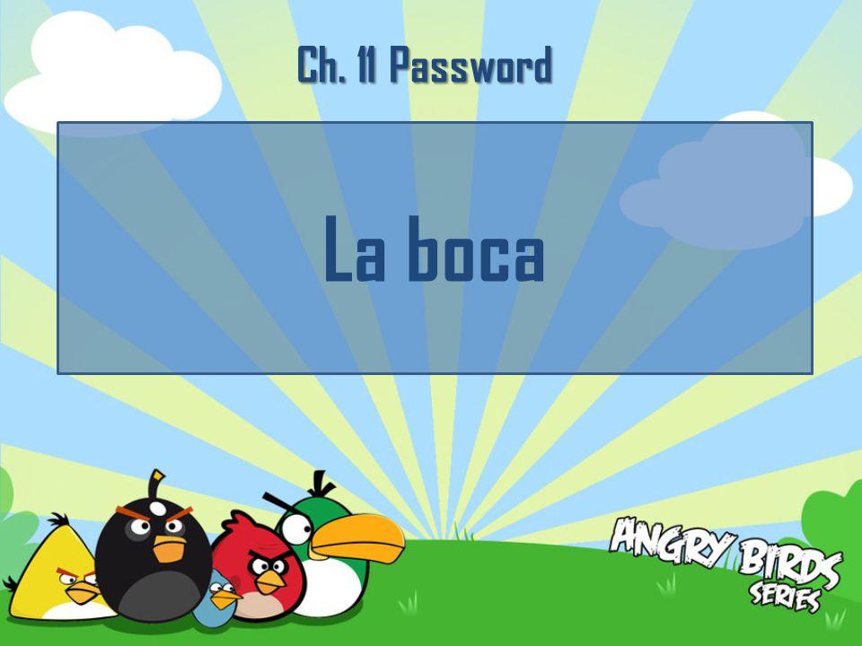 Ch. 11 Password La boca