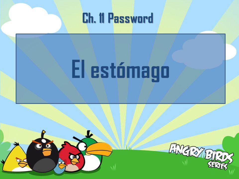 Ch. 11 Password El estómago