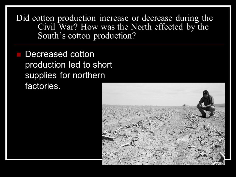 Did cotton production increase or decrease during the Civil War.