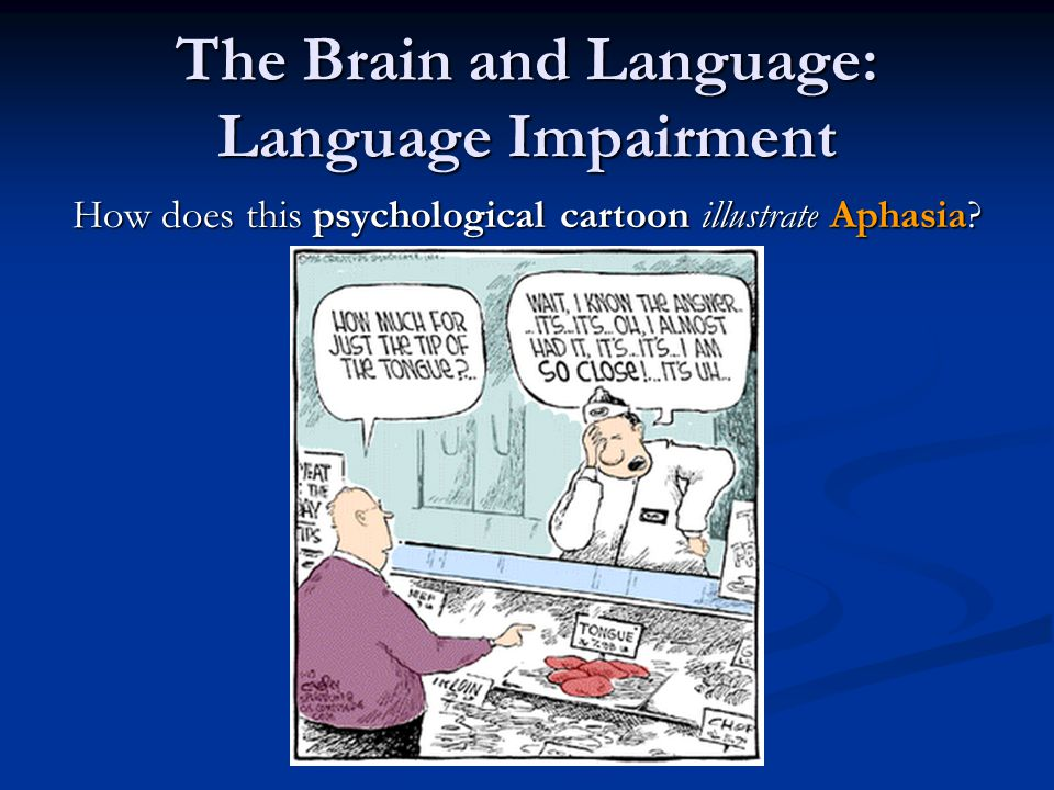 Review What functions of language are associated with the following parts of the brain: What functions of language are associated with the following parts of the brain: Broca's Area Broca's Area Wernicke's Area Wernicke's Area What is Aphasia.