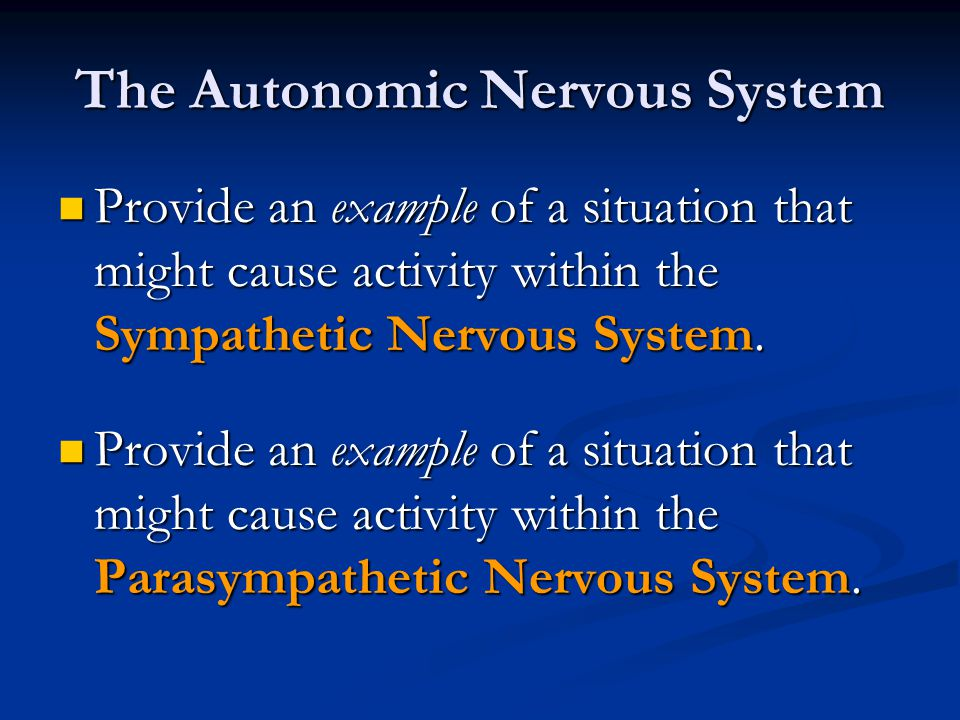 Provide an example of a situation that might cause activity within the Sympathetic Nervous System. Provide an example of a situation that might cause