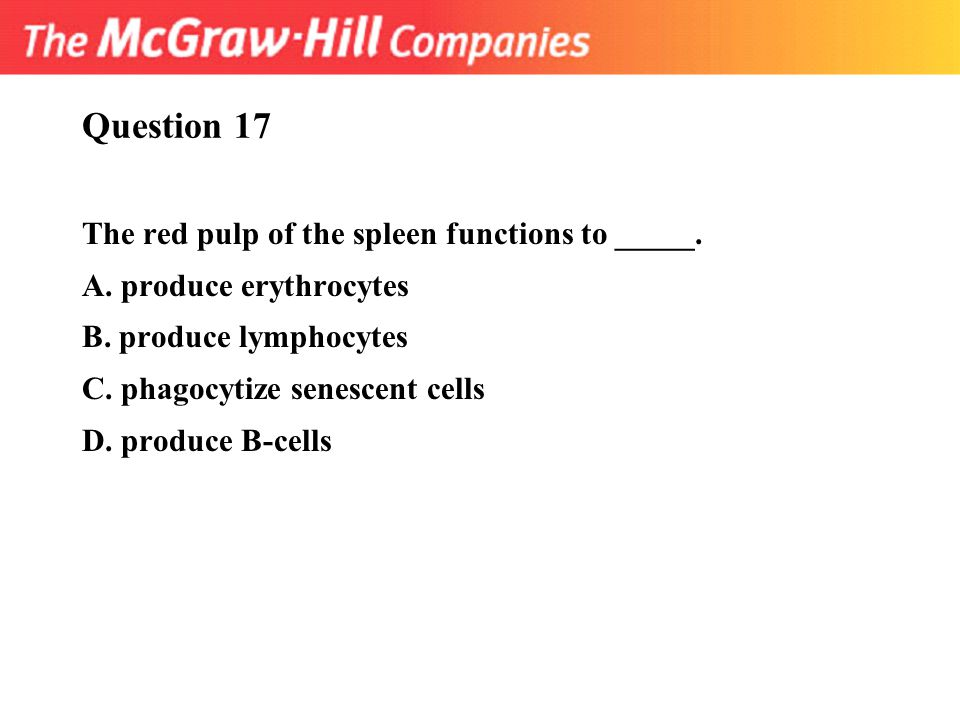Question 17 The red pulp of the spleen functions to _____. A. produce erythrocytes B. produce lymphocytes C. phagocytize senescent cells D. produce B-