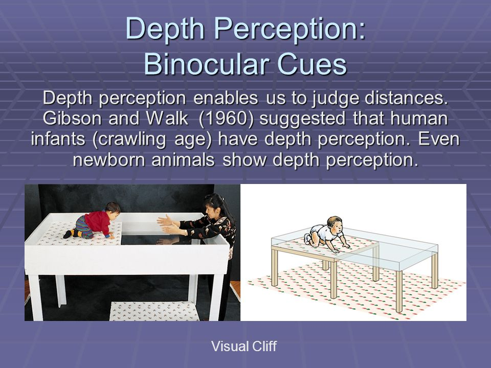 Depth Perception: Binocular Cues Visual Cliff Depth perception enables us to judge distances. Gibson and Walk (1960) suggested that human infants (cra