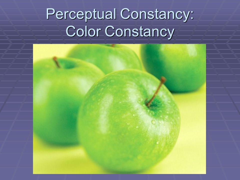 Perceptual Constancy: Color Constancy