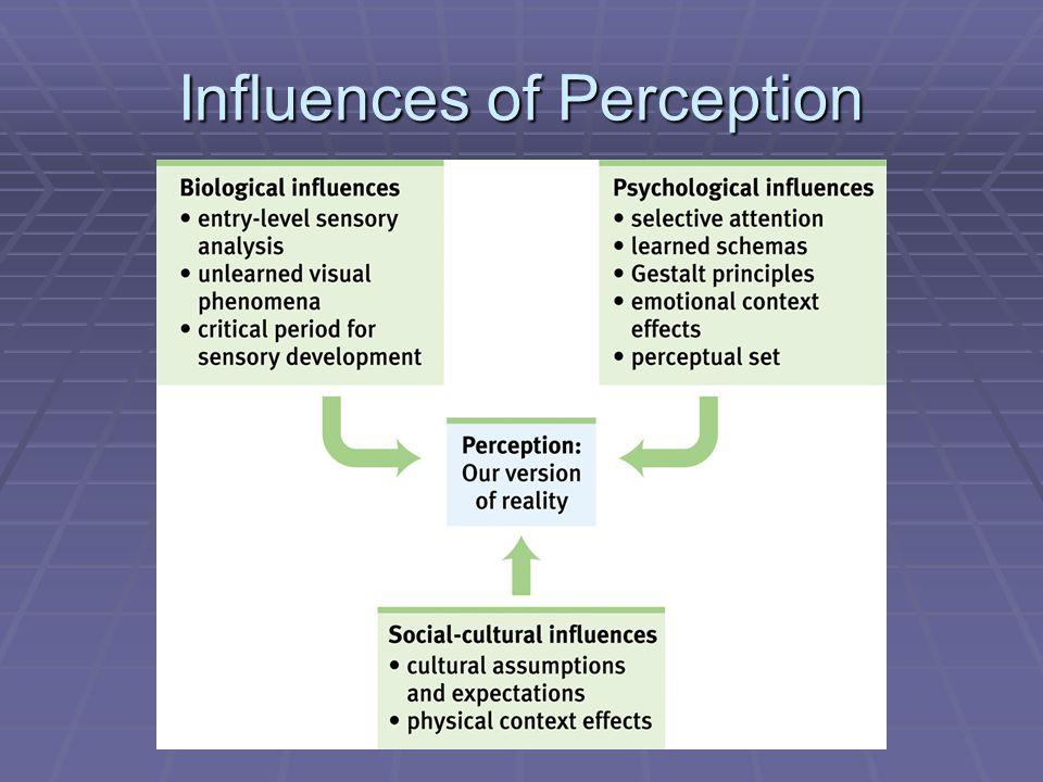 Influences of Perception