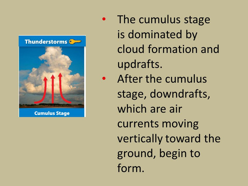 The cumulus stage is dominated by cloud formation and updrafts.