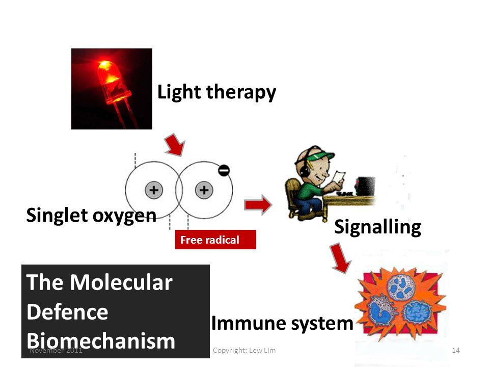 Light therapy Singlet oxygen Signalling Immune system The Molecular Defence Biomechanism Free radical November 201114Copyright: Lew Lim
