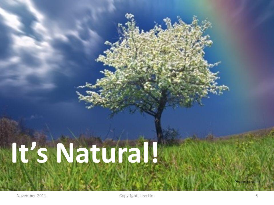 November 2011Copyright: Lew Lim6 It's Natural! Photo: prozac1