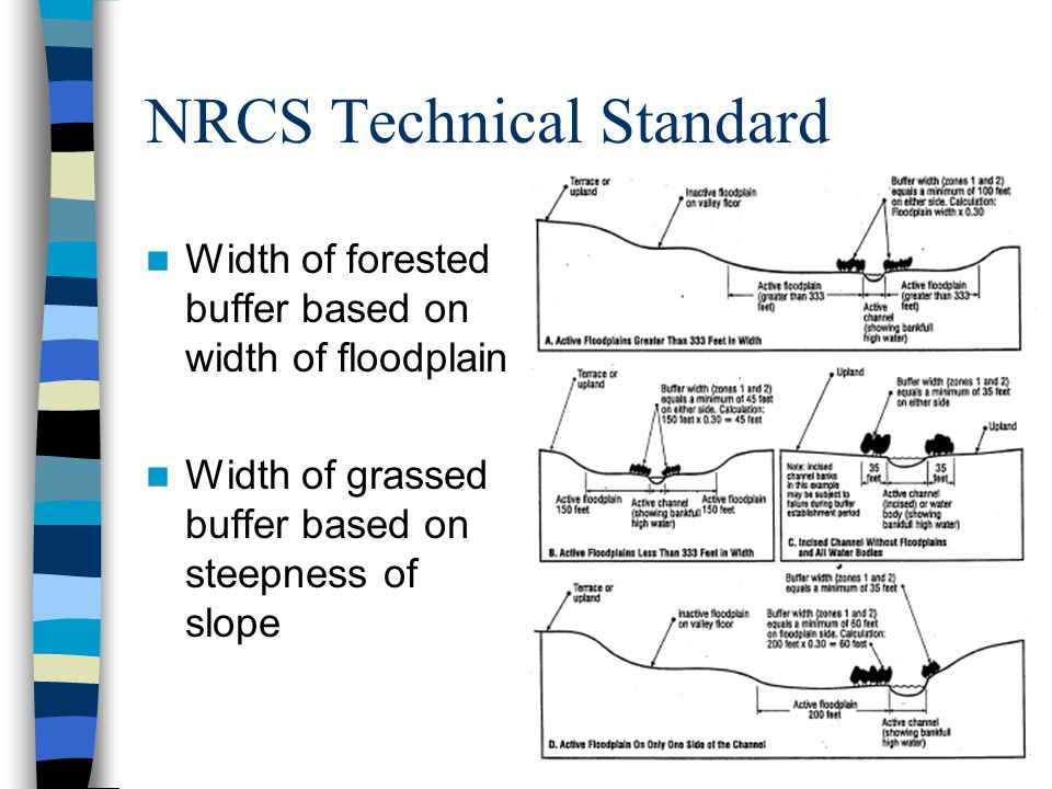 NRCS Technical Standard Width of forested buffer based on width of floodplain Width of grassed buffer based on steepness of slope