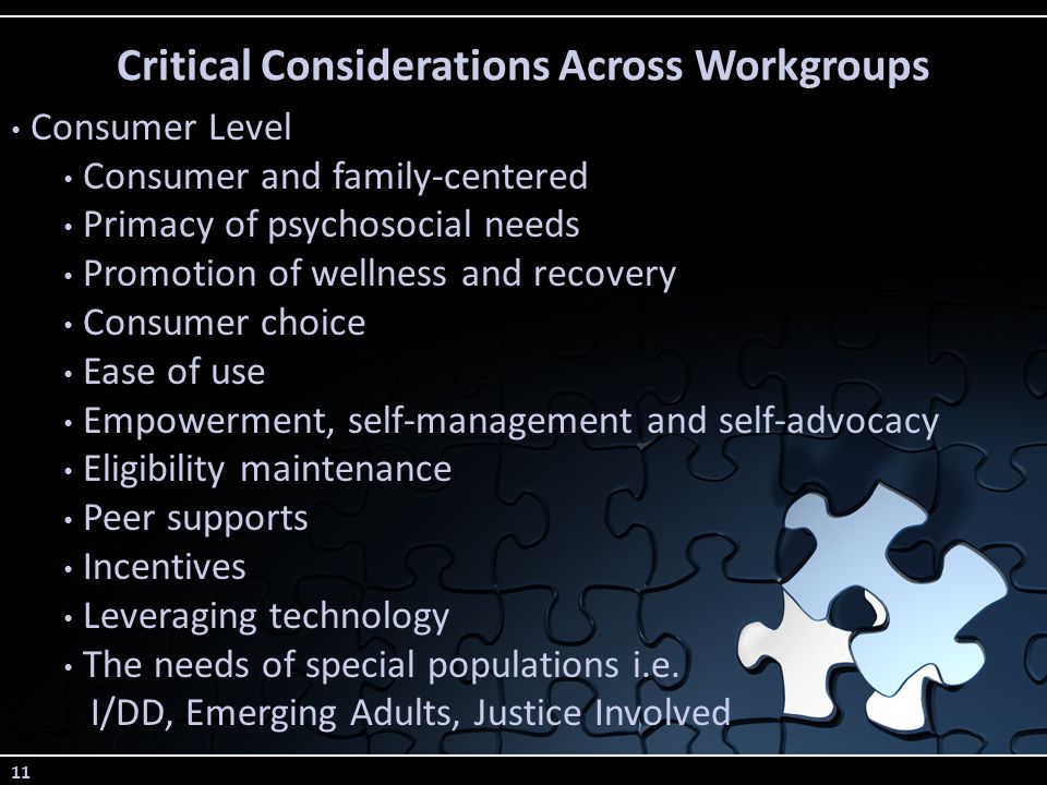 11 Critical Considerations Across Workgroups Consumer Level Consumer and family-centered Primacy of psychosocial needs Promotion of wellness and recovery Consumer choice Ease of use Empowerment, self-management and self-advocacy Eligibility maintenance Peer supports Incentives Leveraging technology The needs of special populations i.e.