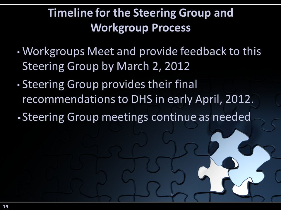 19 Timeline for the Steering Group and Workgroup Process Workgroups Meet and provide feedback to this Steering Group by March 2, 2012 Steering Group provides their final recommendations to DHS in early April, 2012.
