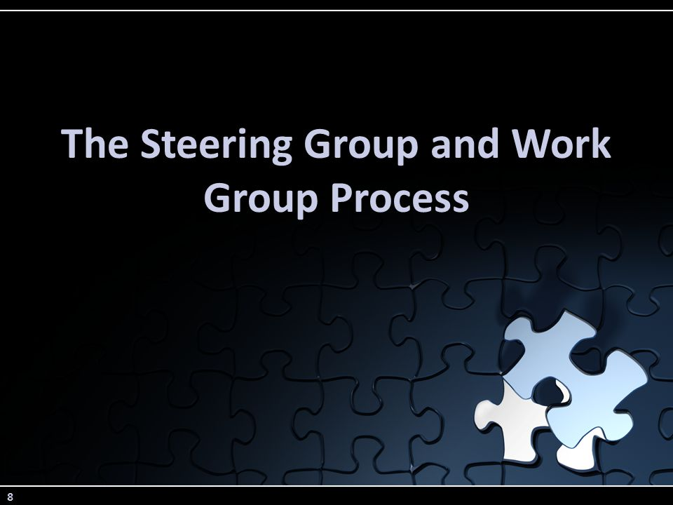 8 The Steering Group and Work Group Process
