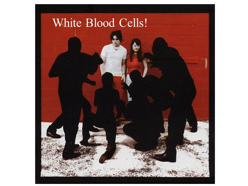 White Blood Cells!