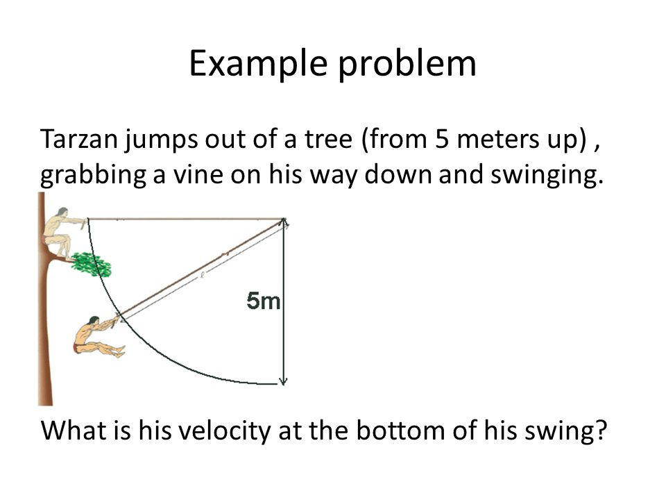 Example problem Tarzan jumps out of a tree (from 5 meters up), grabbing a vine on his way down and swinging. What is his velocity at the bottom of his