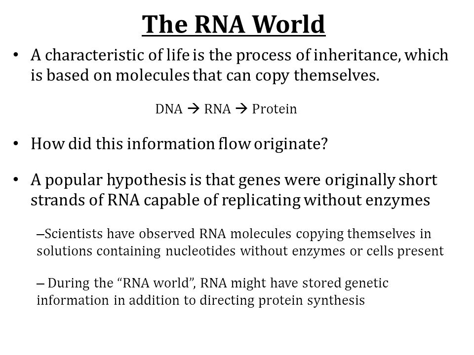 The RNA World A characteristic of life is the process of inheritance, which is based on molecules that can copy themselves. DNA  RNA  Protein How di