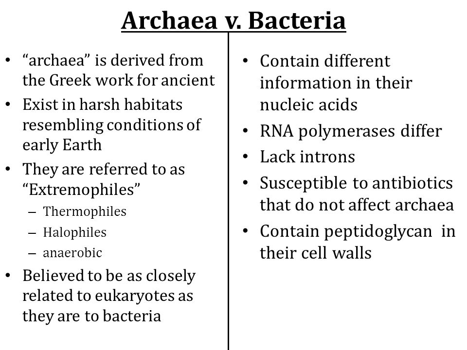 """Archaea v. Bacteria """"archaea"""" is derived from the Greek work for ancient Exist in harsh habitats resembling conditions of early Earth They are referre"""