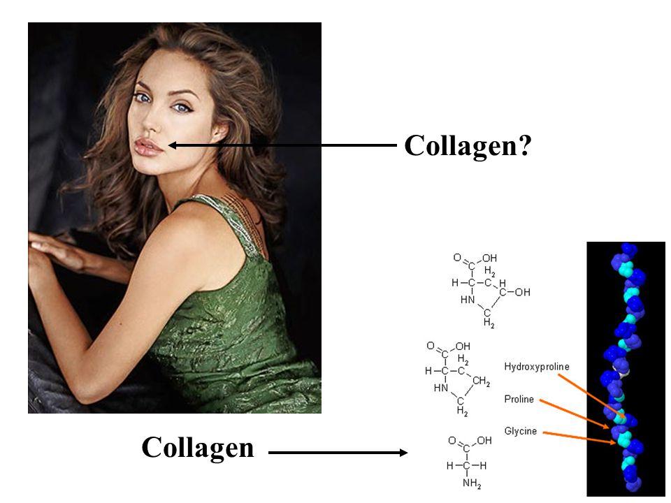 Collagen?