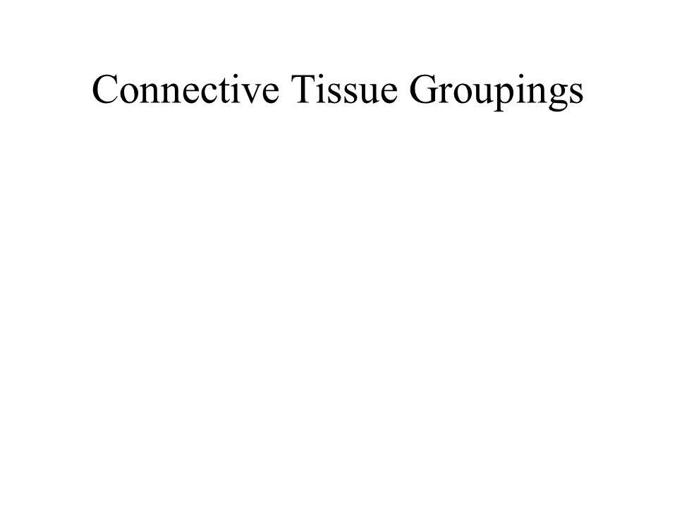Connective Tissue Groupings