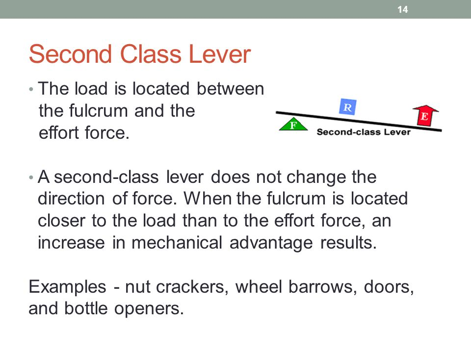 Second Class Lever The load is located between the fulcrum and the effort force. A second-class lever does not change the direction of force. When the