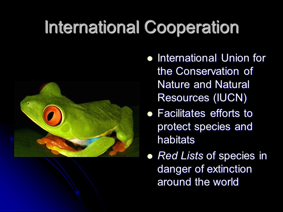 International Cooperation International Union for the Conservation of Nature and Natural Resources (IUCN) International Union for the Conservation of