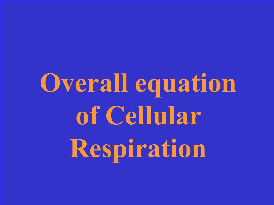 Cellular Respiration Stages of CR Pigments Light Reactions Calvin Cycle 10 Points 20 Points 30 Points 40 Points 50 Points 10 Points10 Points10 Points10 Points10 Points 20 Points 30 Points 40 Points 50 Points 30 Points 40 Points 50 Points Photosynthesis