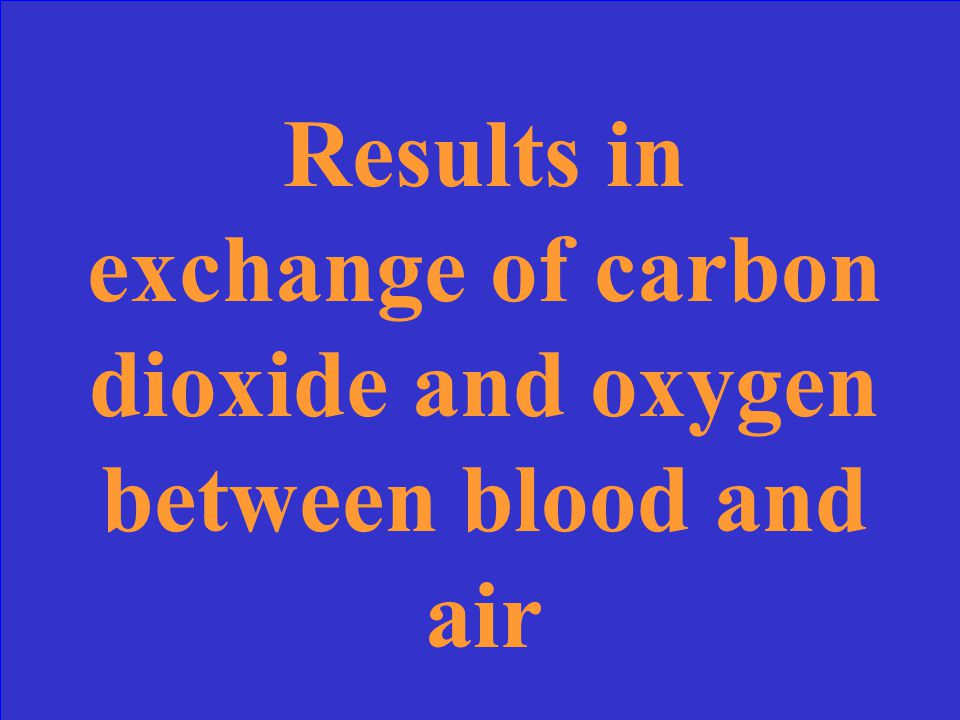 Results in exchange of carbon dioxide and oxygen between blood and air