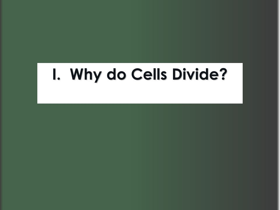 I. Why do Cells Divide?