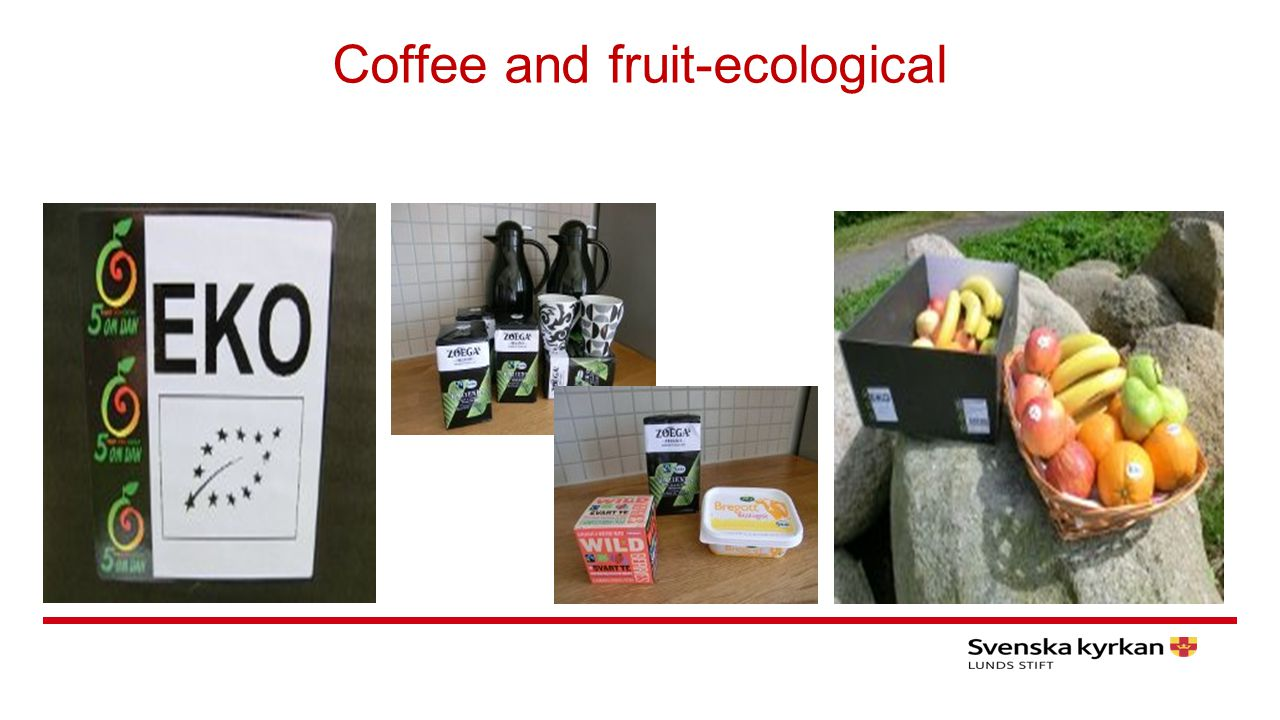 Coffee and fruit-ecological