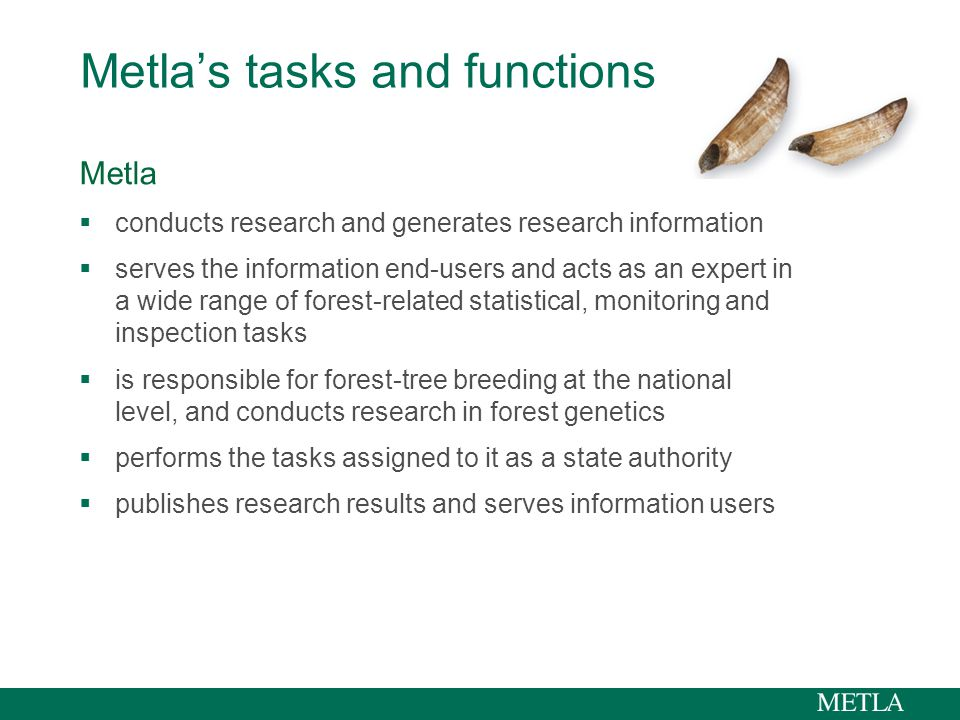 Metla's tasks and functions Metla  conducts research and generates research information  serves the information end-users and acts as an expert in a wide range of forest-related statistical, monitoring and inspection tasks  is responsible for forest-tree breeding at the national level, and conducts research in forest genetics  performs the tasks assigned to it as a state authority  publishes research results and serves information users