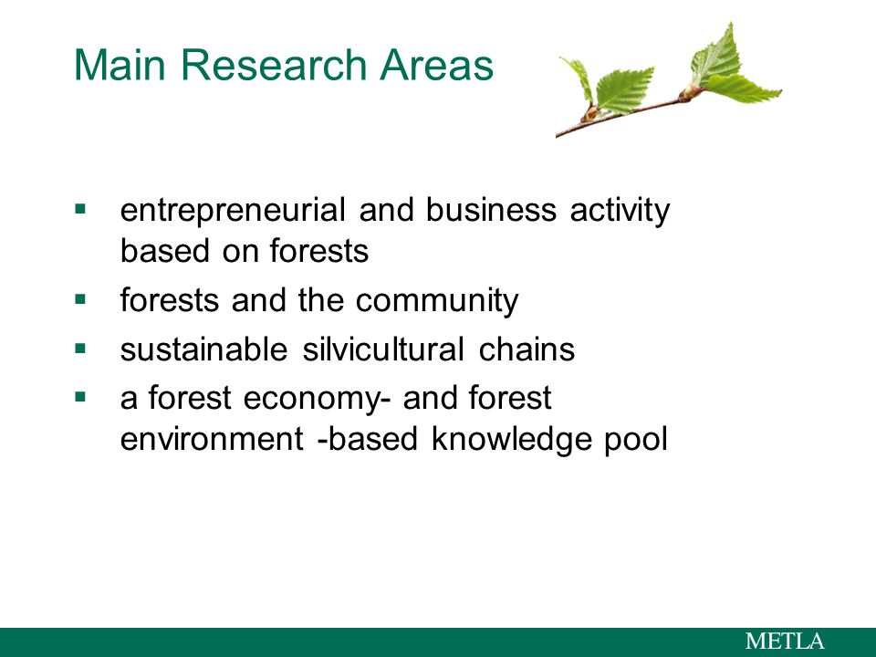 Main Research Areas  entrepreneurial and business activity based on forests  forests and the community  sustainable silvicultural chains  a forest economy- and forest environment -based knowledge pool